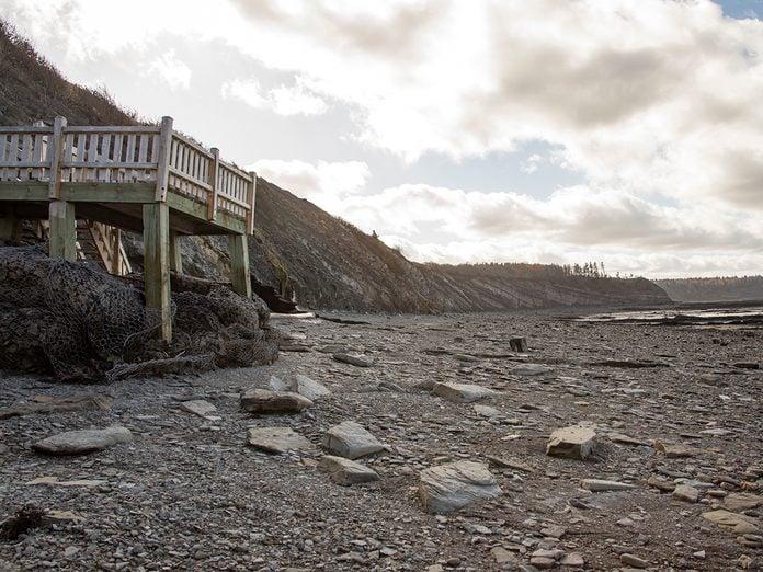East Coast Canada - Joggins Fossil Cliffs