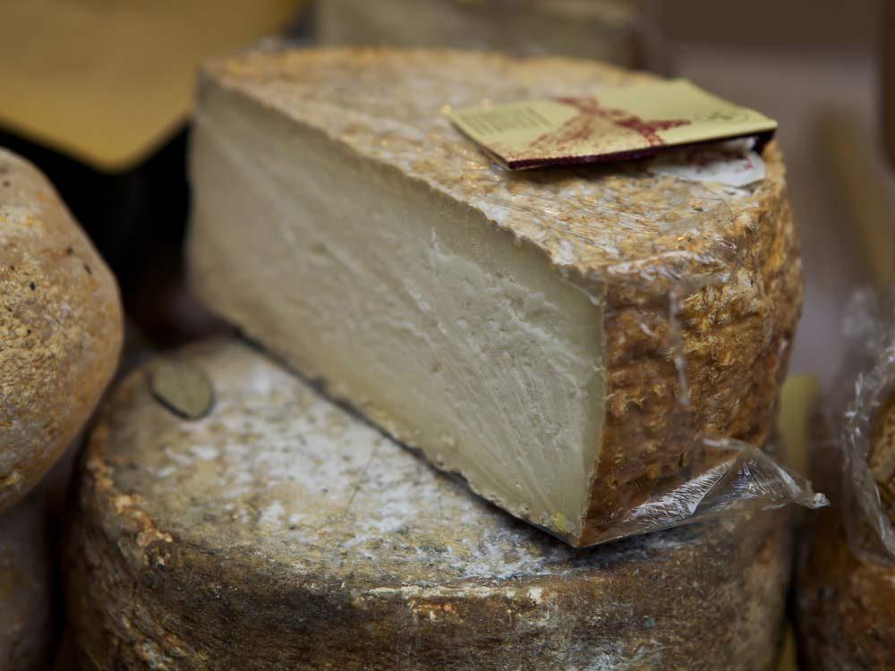 Gourmet cheese
