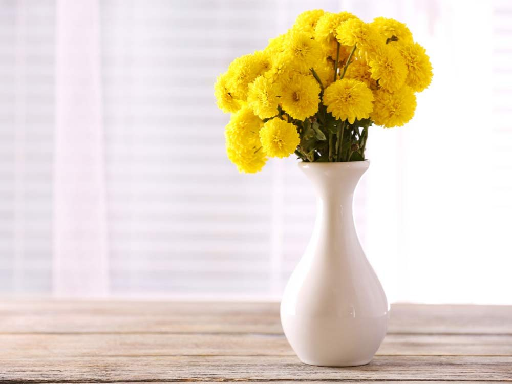 Beautiful flowers in vase