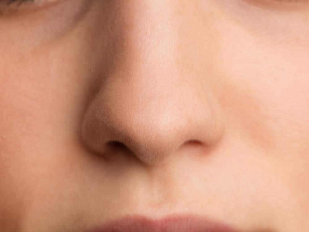 Close-up of female nose