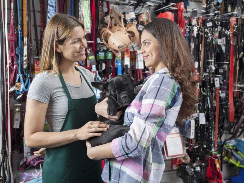 Canadian pet stores