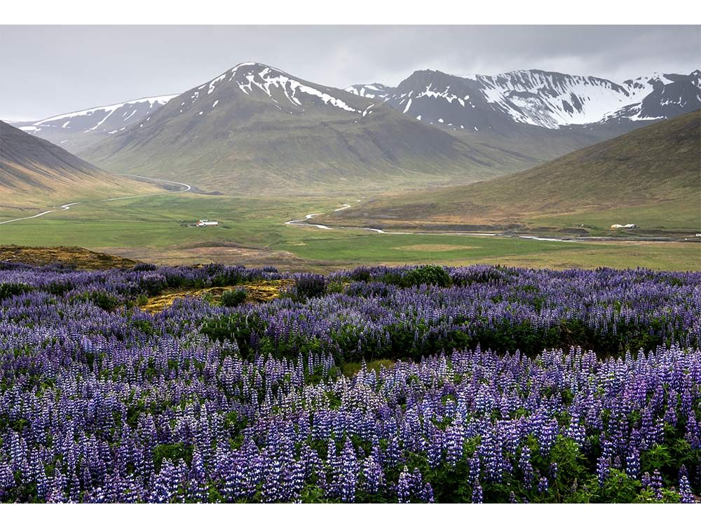 West Fjords, Iceland