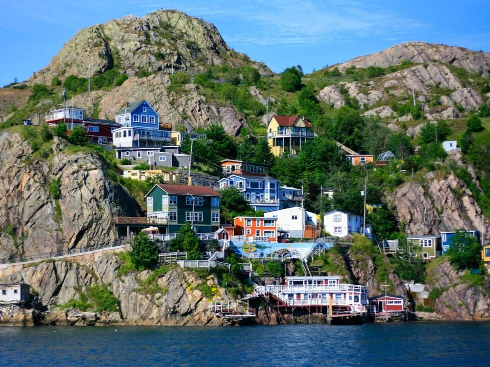Language of Newfoundland