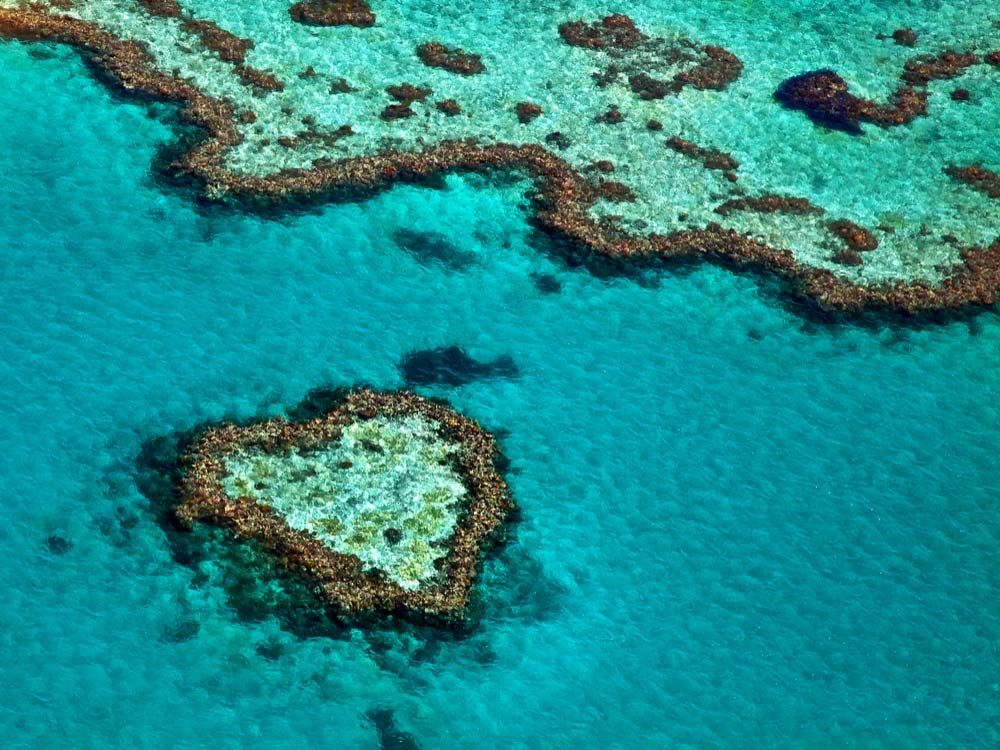 Heart Reef in Queensland, Australia