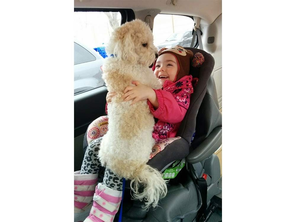 Child with dog in vehicle
