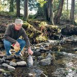 How a Town in British Columbia is Using Dead Fish to Restore Their Rivers