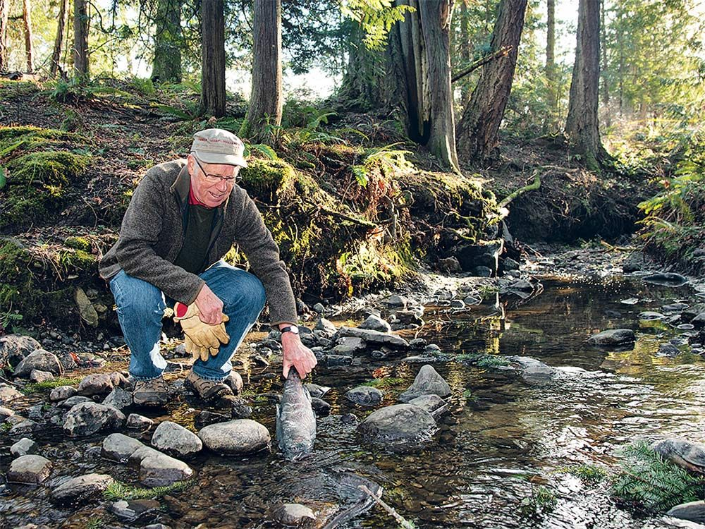 saving-canadas-rivers-douglas-creek