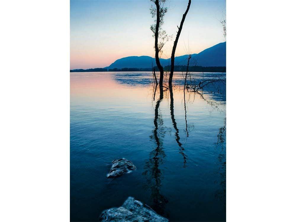 Fraser River in Chilliwack, British Columbia