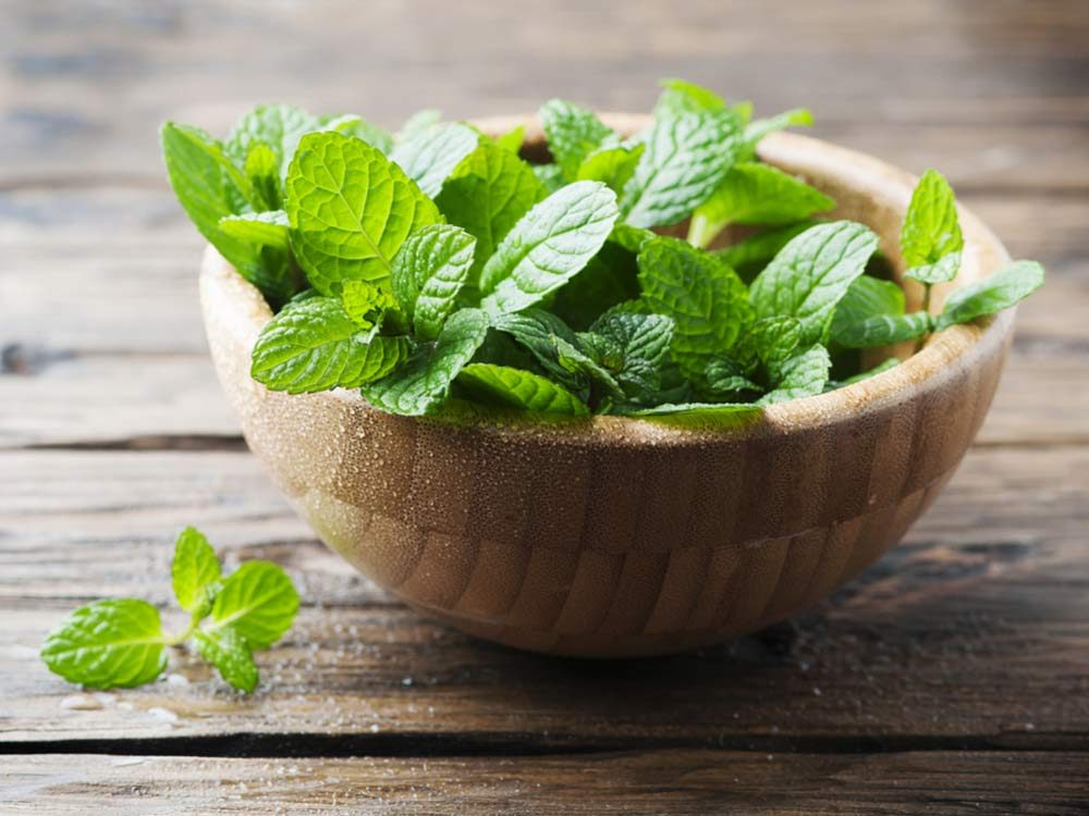 Peppermint in wooden bowl