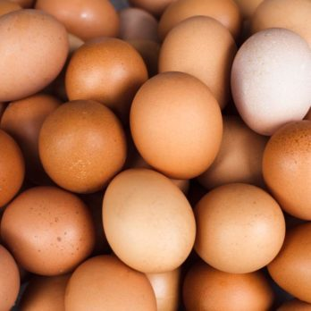 This Is the Reason Why North Americans Refrigerate Eggs and Europeans Don't