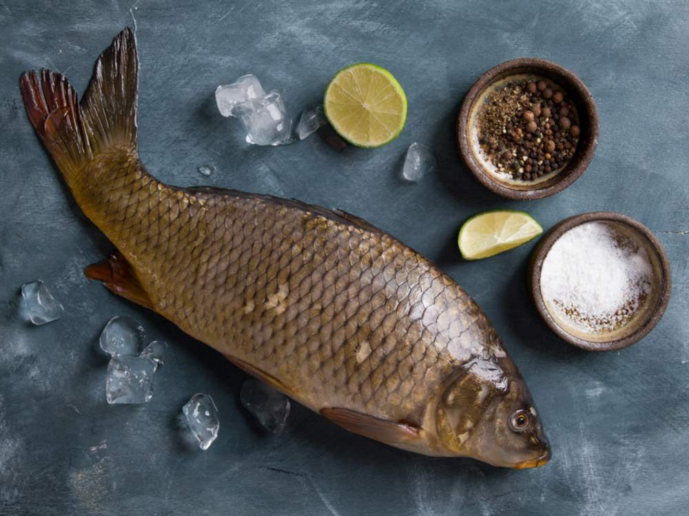 Carp fish being prepared