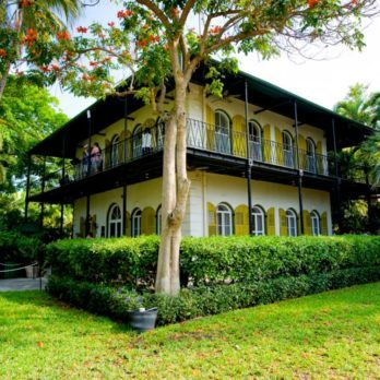 Ernest Hemingway's Florida House Is Now Home to Over 50 Six-Toed Cats