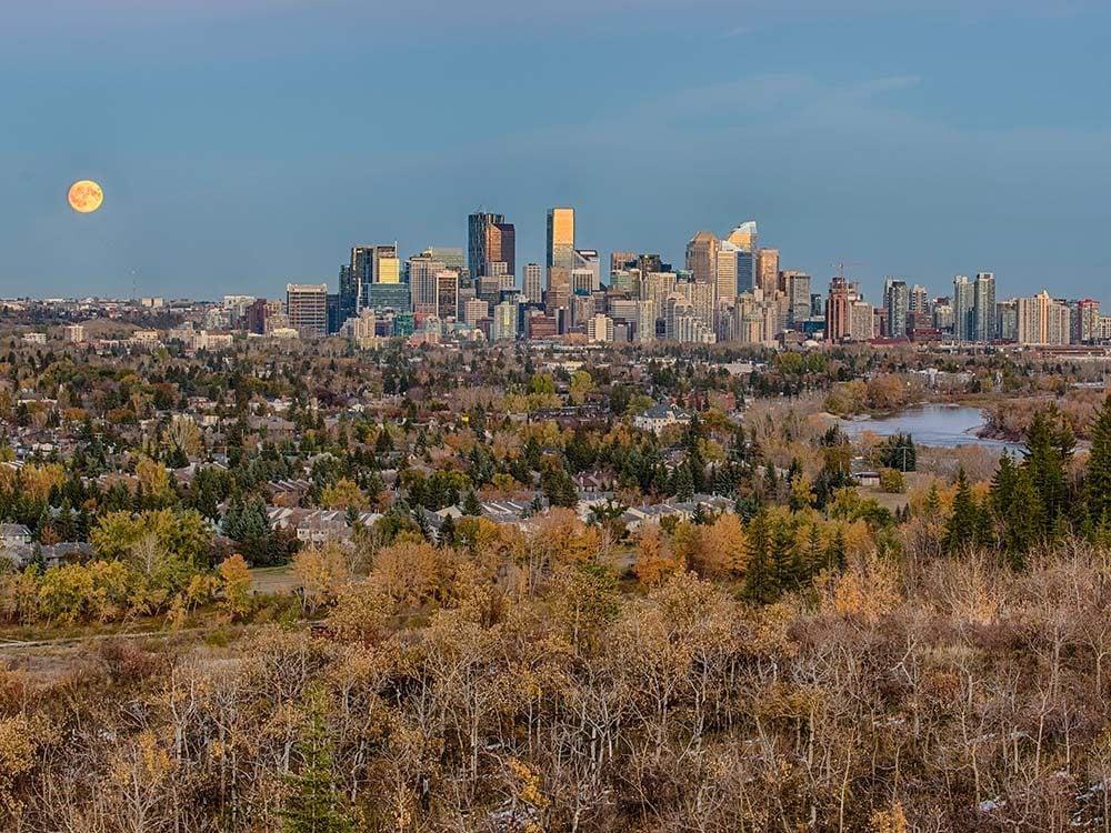 City skyline in autumn