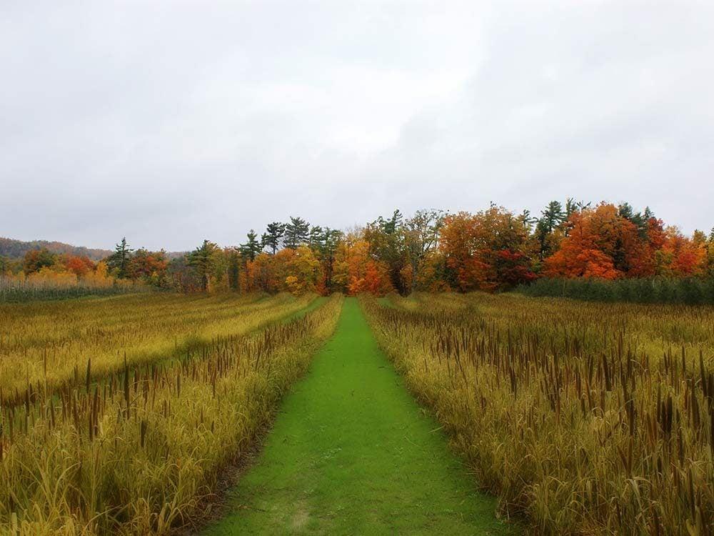 Chudleigh's Farm in Halton Hills, Ontario