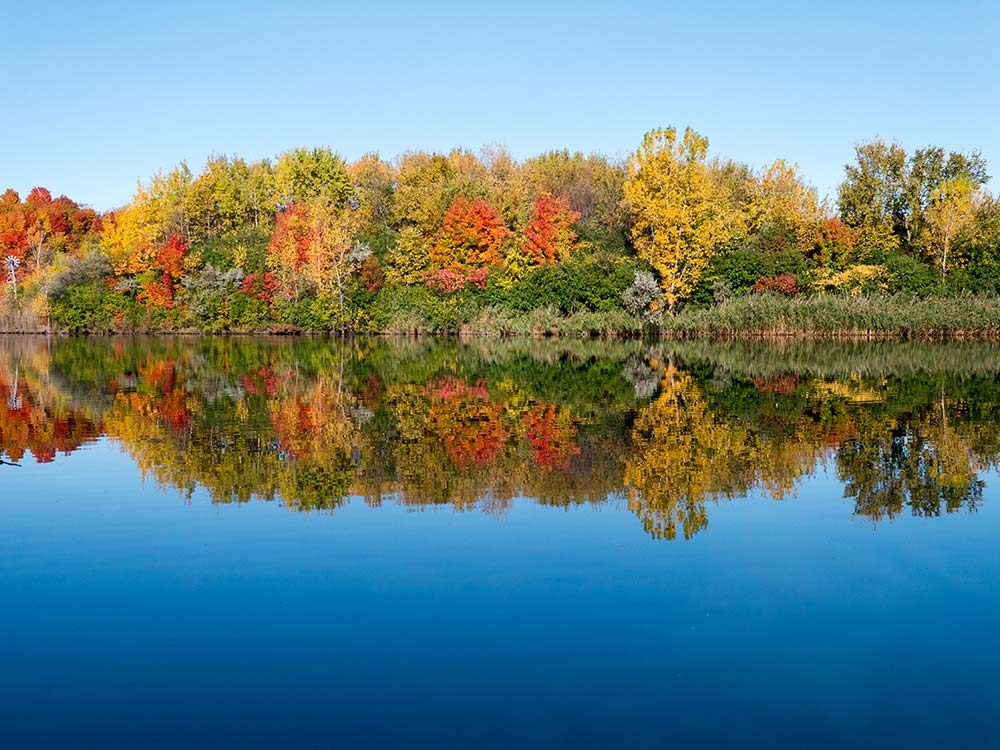 Centennial Park in Quebec