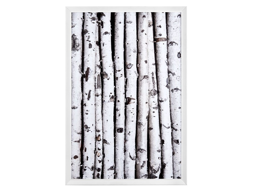 Framed birch wall art