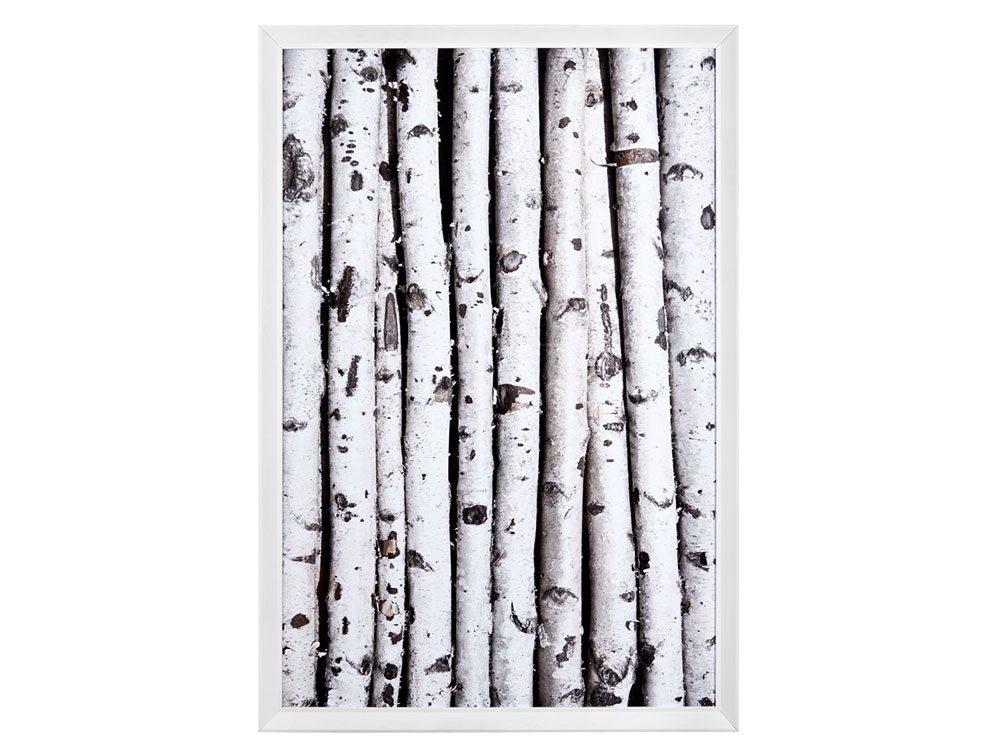 Framed birch wall art