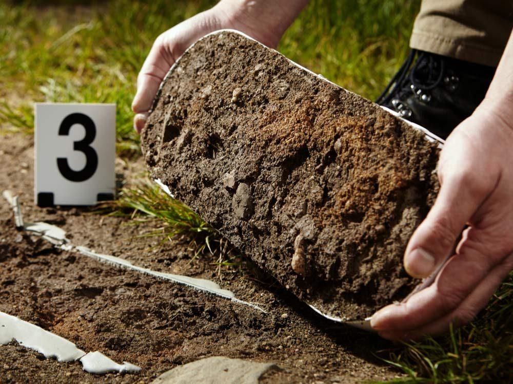 FBI examining footprint in dirt