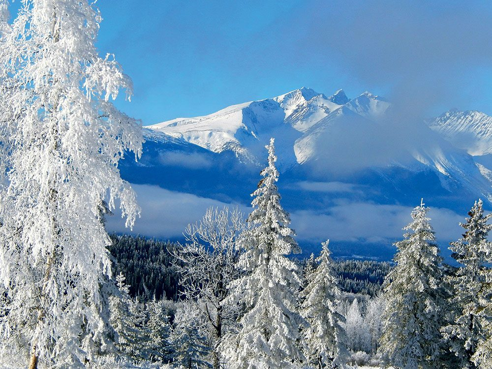 Canadian Winter: Bulkley Valley, British Columbia