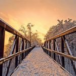 25 Stunning Shots that Showcase the Beauty of the Canadian Winter