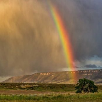 6 Crazy and Colourful Facts About Rainbows