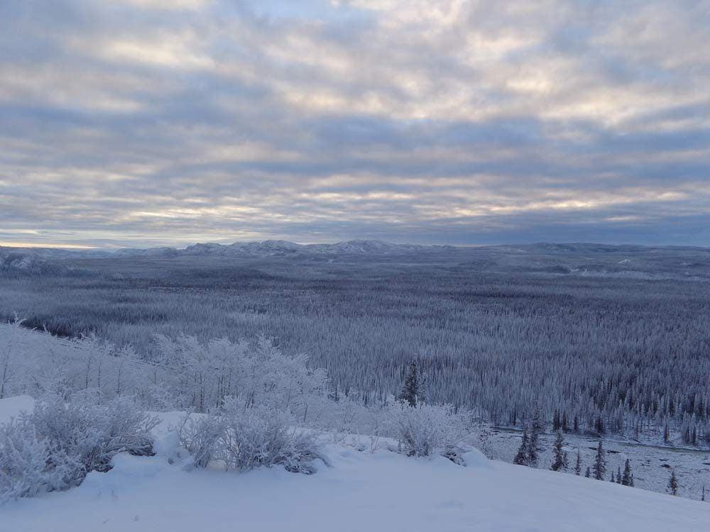 Winter in Yukon