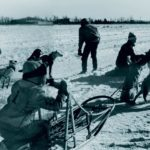 Quintessentially Canadian: What I Learned from Dog Sledding in Northern Alberta