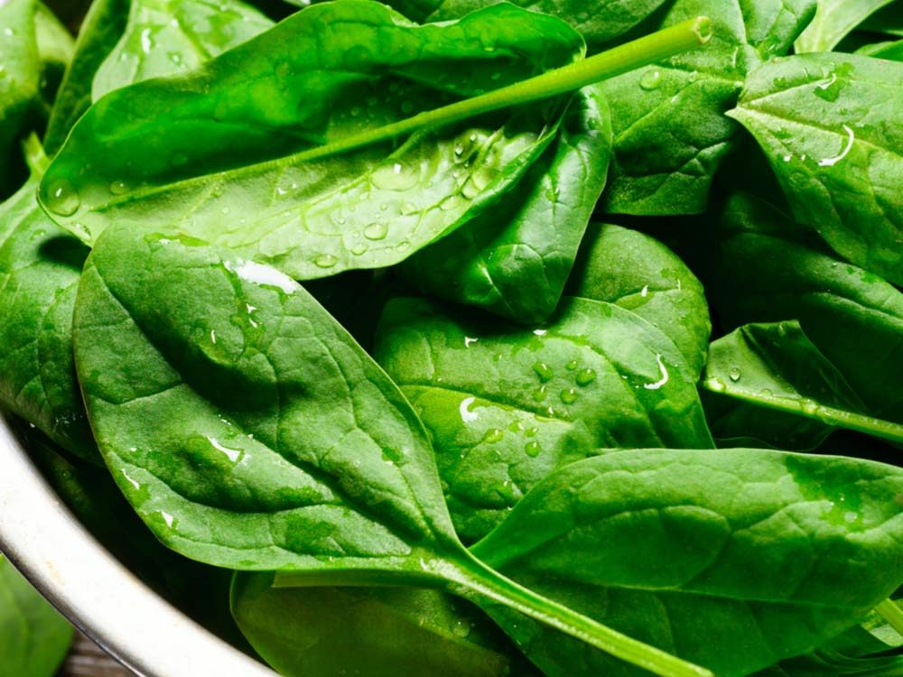 Close-up of spinach