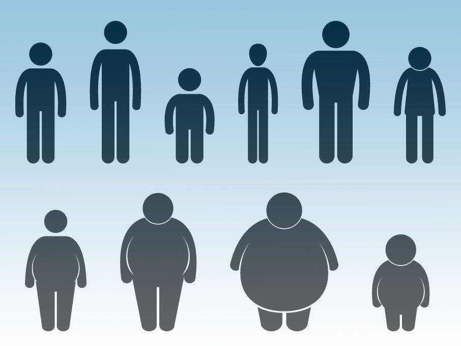 Male body types women prefer