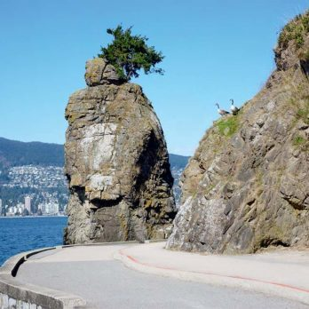 5 Instagram-Worthy Sights You Can Capture on the Vancouver Seawall