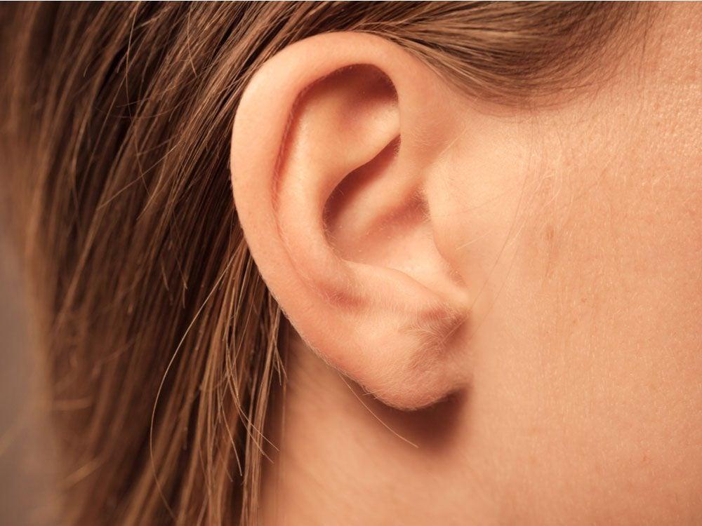 Body parts - Woman's ear