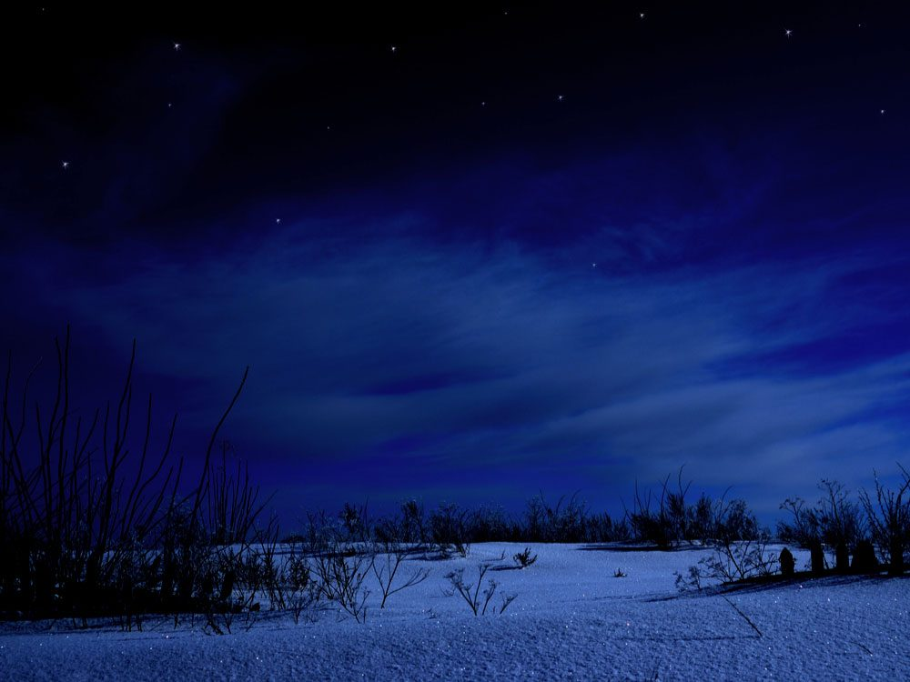 British Columbia winter wilderness