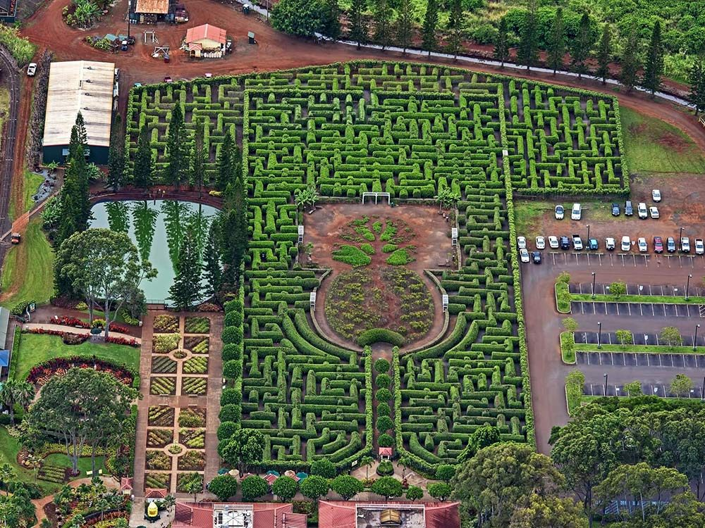 Dole Plantation Maze, Hawaii