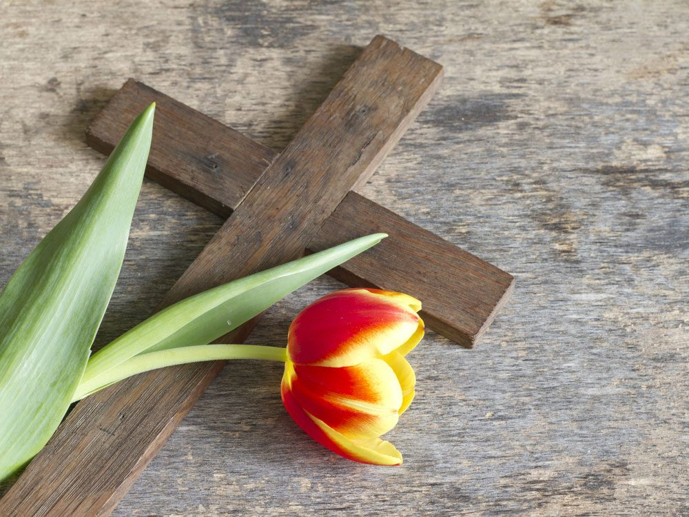 Christian cross and rose
