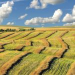 Saskatchewan: Celebrating the Beauty of Canada's Most Underrated Province