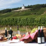 6 Best Destinations Around the World for Serious Wine Lovers