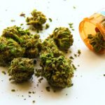 5 Conditions That Can Be Treated with Medical Marijuana—and 3 That Probably Can't