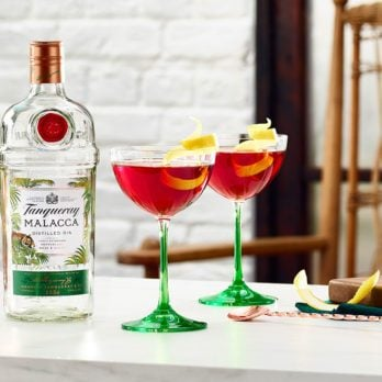 Easy Summer Cocktail Recipe: Tanqueray Martinez