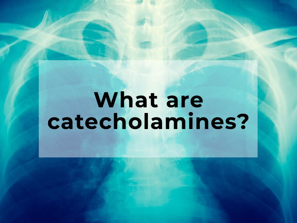 What are catecholamines?