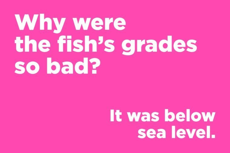 Funny jokes to tell - why were the fish's grades so bad?