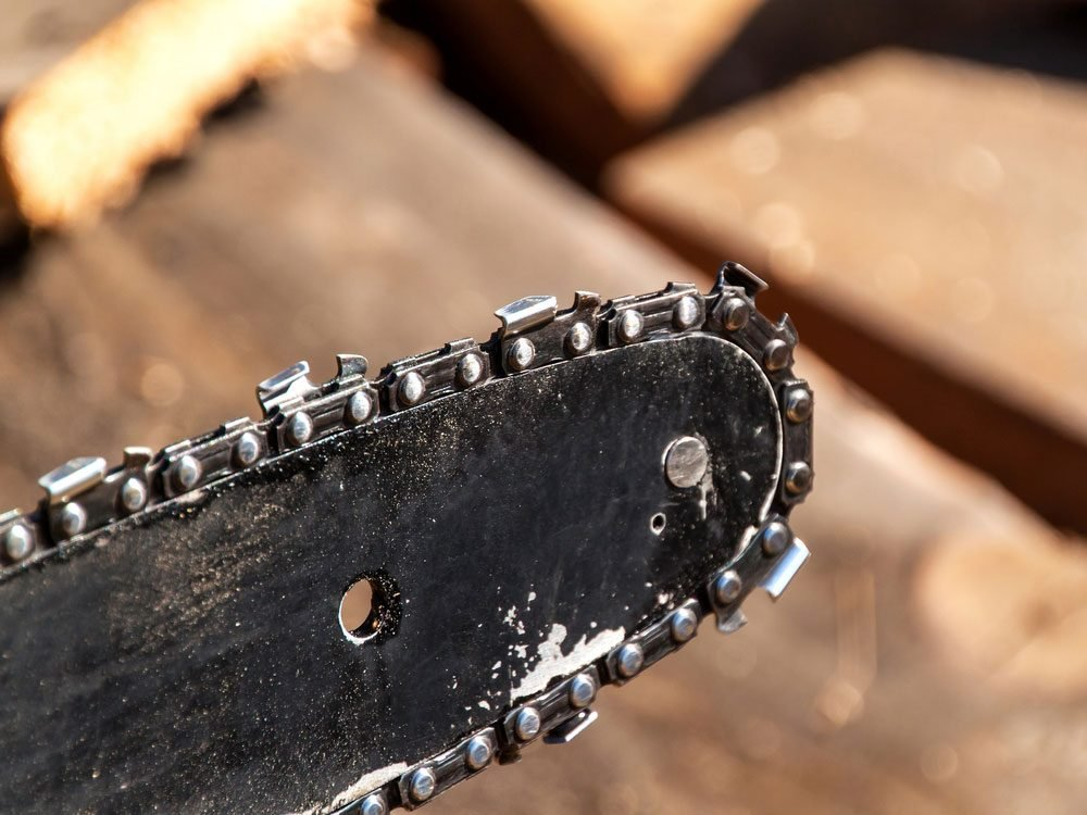 Close-up of chainsaw blade