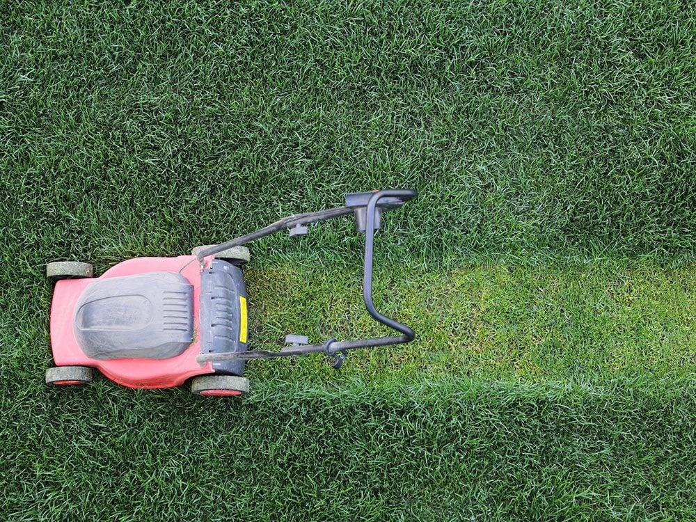 Wedding jokes - cutting the lawn