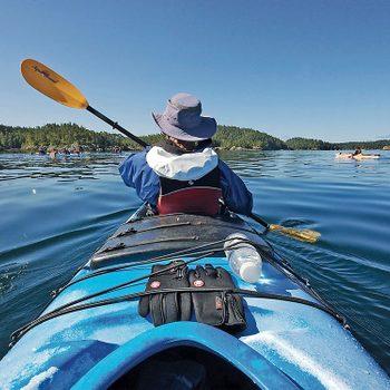 johnstone strait kayaking - paddling in kayak