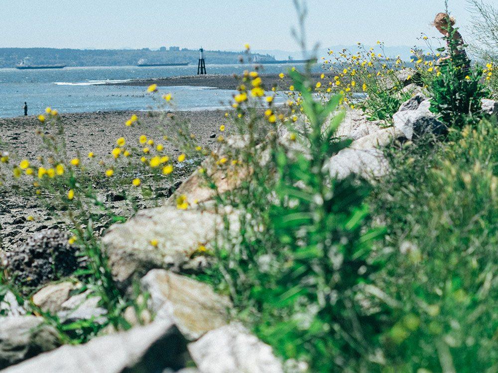 Vancouver North Shore: Spirit Trail