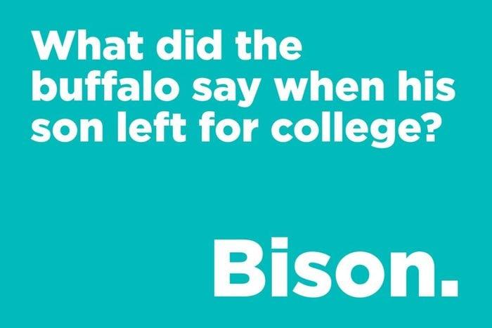 Buffalo joke