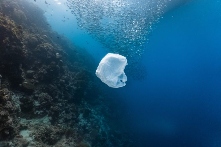 Ocean plastic is rising dramatically