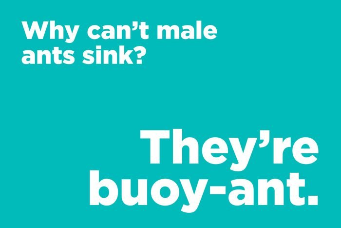 Why can't male ants sink?