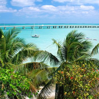 5 Essential Experiences for Your Key West Bucket List