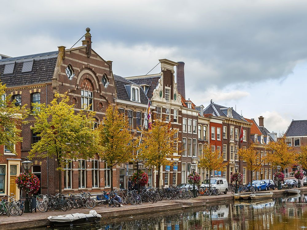 How Thanksgiving is celebrated in the Netherlands
