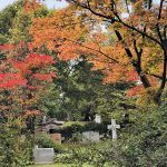 More Than Just a Cemetery: Exploring Toronto's Mount Pleasant Cemetery
